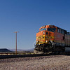 Railroads & Trains : 42 galleries with 733 photos